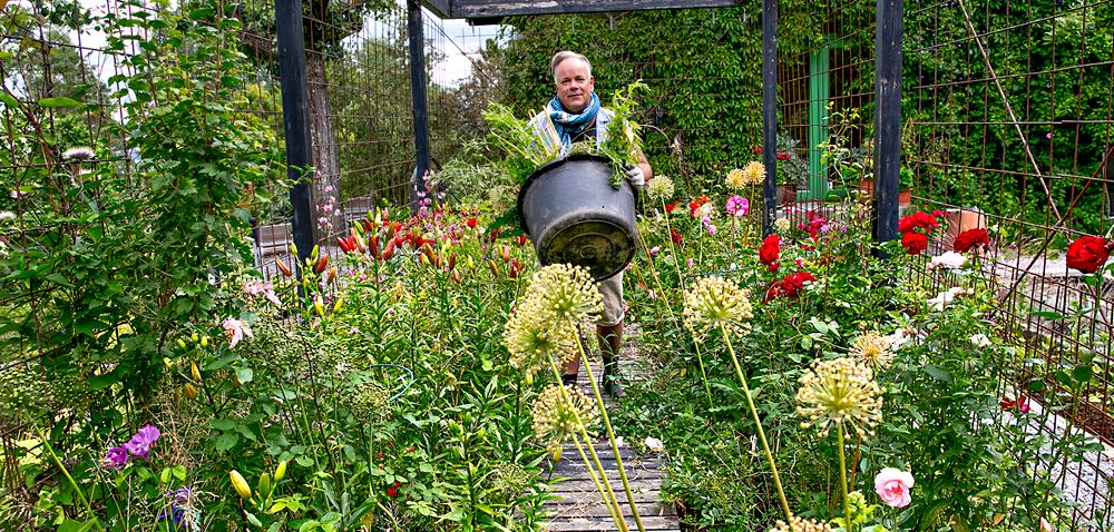 Hageentusiast Arvid Dalseth Iversen på Nesodden har stor hage, som rådyrene har vært veldig glad i. Han har bygget en pergola av armeringsnett og gjerder rundt deler av hagen for å holde rådyrene unna.